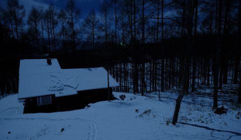 月夜の晩に鹿の親子がやってくる