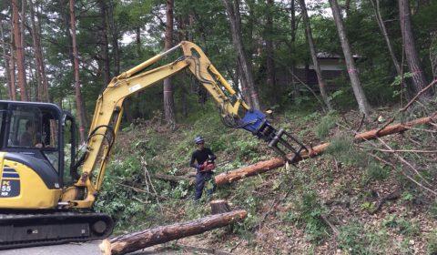 伐採工事 ー敷地確認のためにー