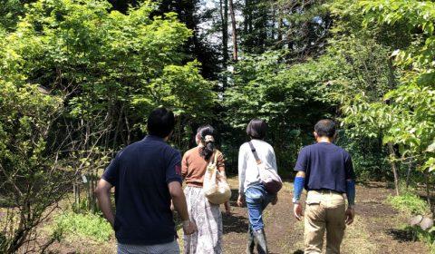 樹木の畑巡り