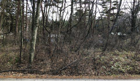 森の中に暮らす ―デッキリビングのある家―