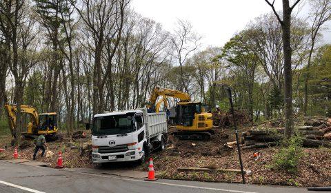 伐採工事 ―新しい風景―